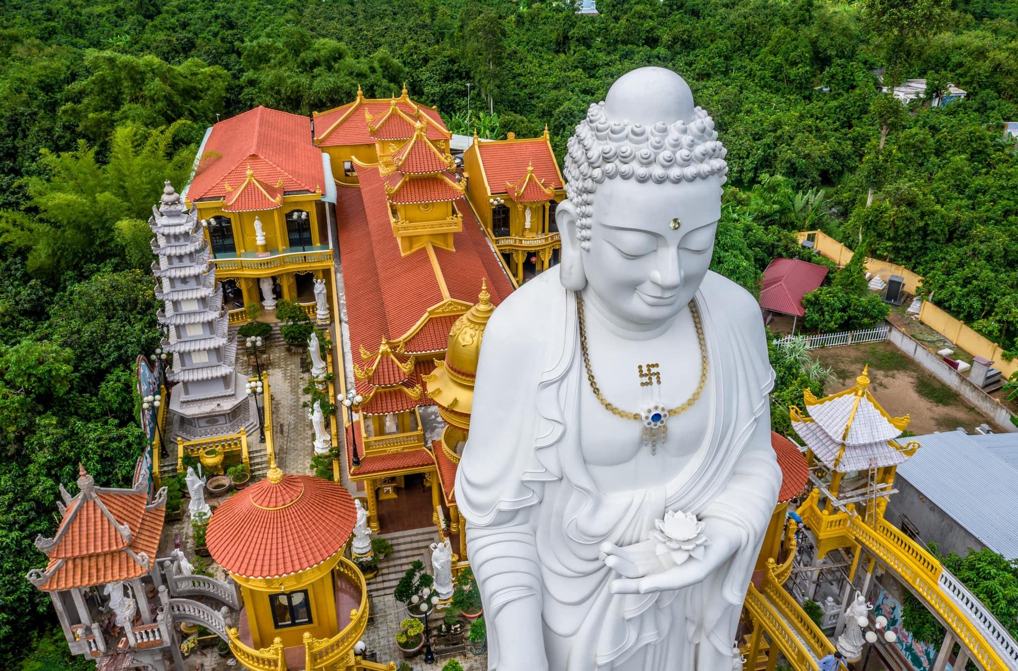 Chùa đã xác lập kỷ lục Việt Nam với Quần thể tượng Phật Tổ A Di Đà và 48 vị Bồ tát Thánh chúng lớn nhất.